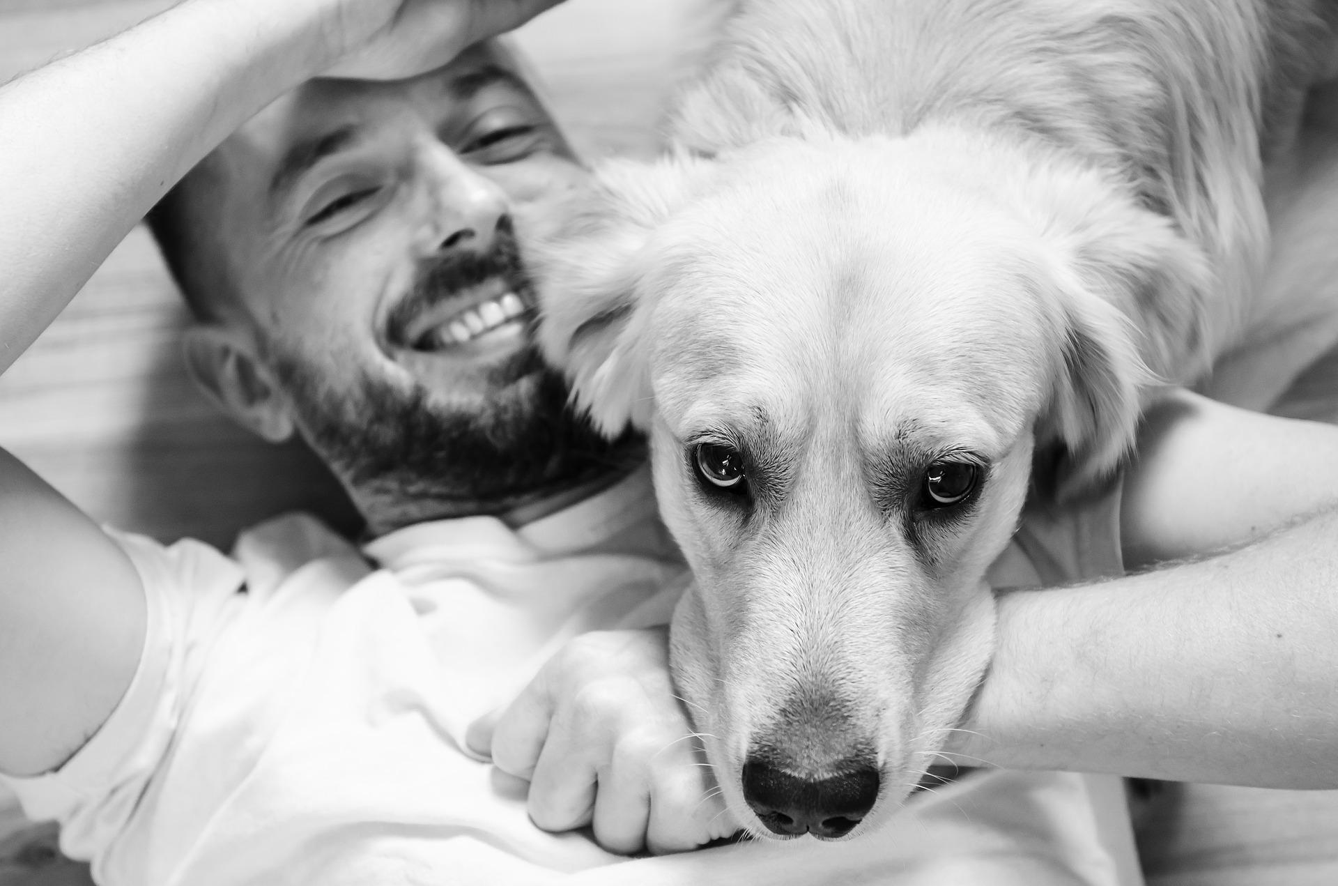 dog care information