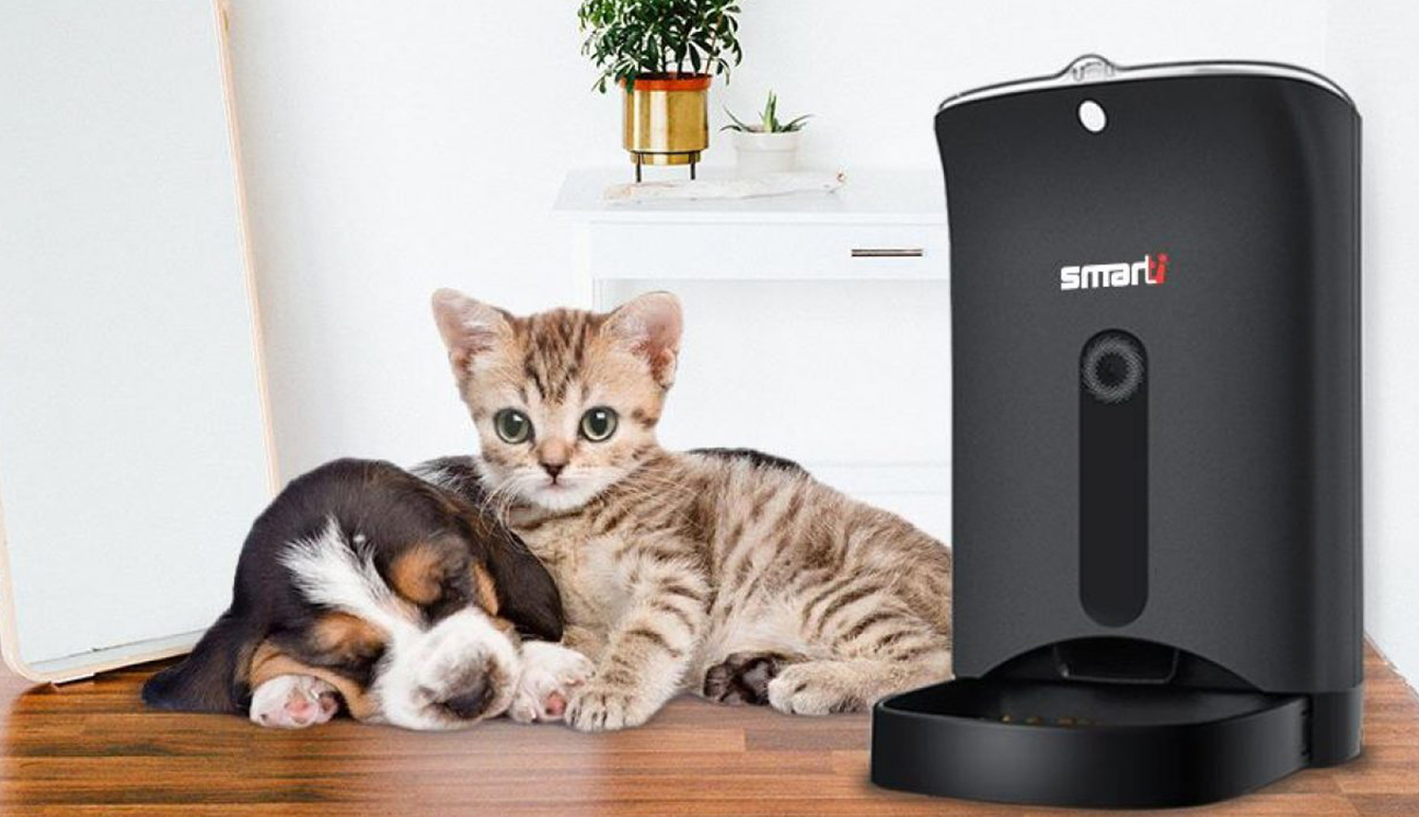 automatic cat feeder with collar sensor